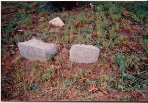 dog tombstones